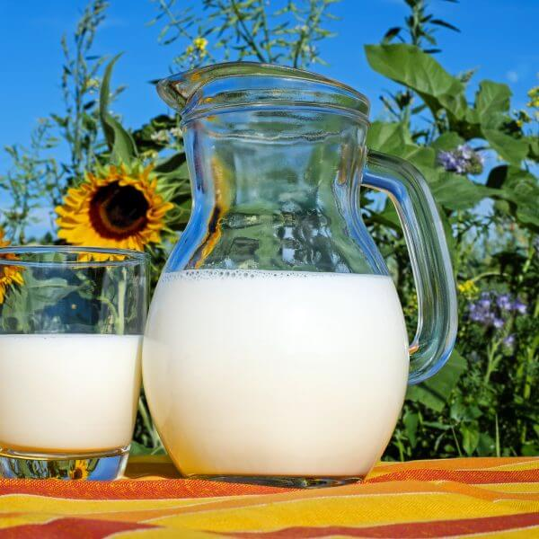 Milk glass and pitcher beside sunflowers