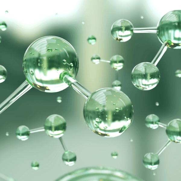 H2O water molecules in food science