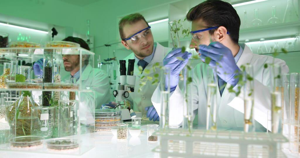 Two male scientists working in a lab