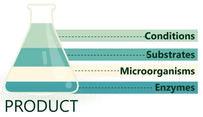 Product Breakdown iNewtrition