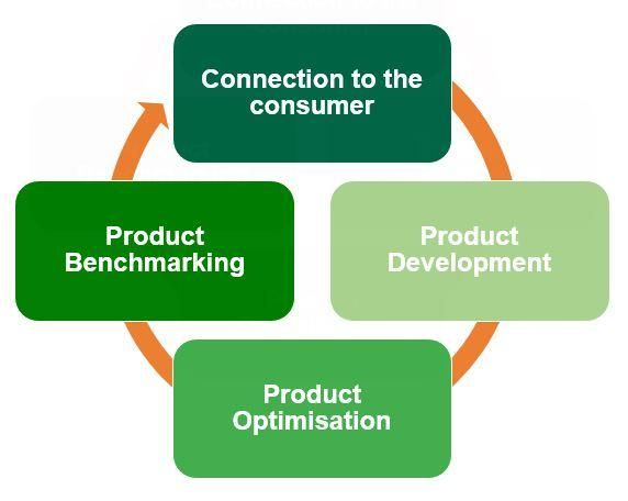 consumer-centric innovation iteration increment disruption