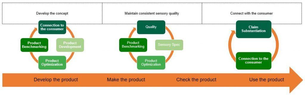 Sensory Science Process Chart