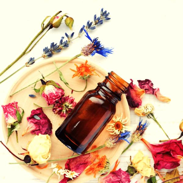 Botanical Ingredients iNewtrition Functional Foods Formulation